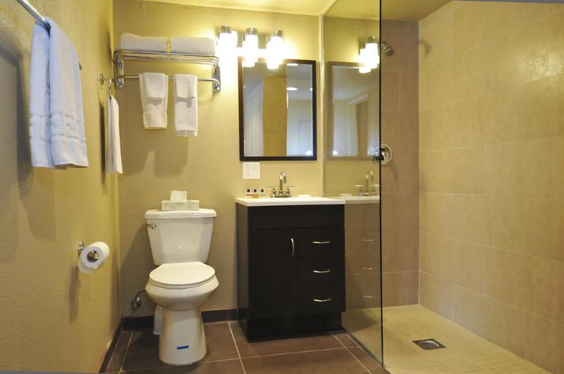 Amazing Gay Bathroom Property