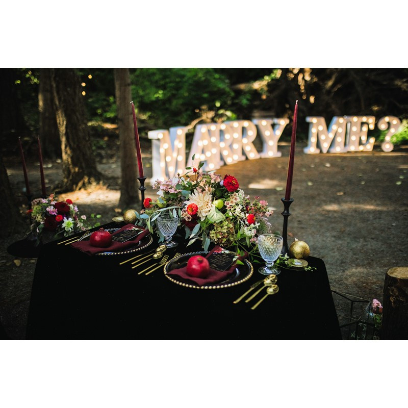 proudBIZ-Bogart-Wedding-Proposals-3