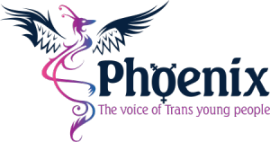 Phoenix Youth Group