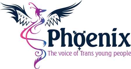 Phoenix Youth Group